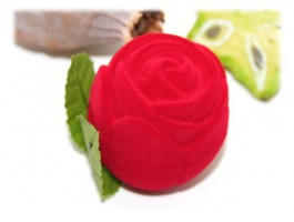 Bijoux Saint-Valentin - Ecrin rose rouge